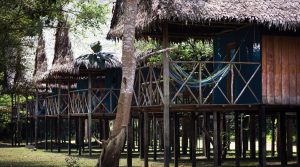 muyuna-lodge-amazon-iquitos